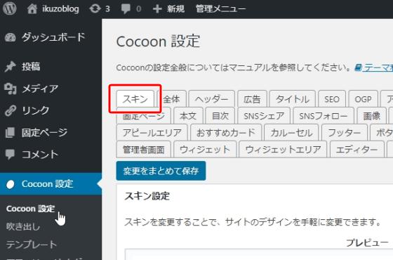 Cocoon設定のタブの中から「スキン」を選ぶ